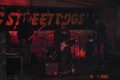 street-dogs-2011-028
